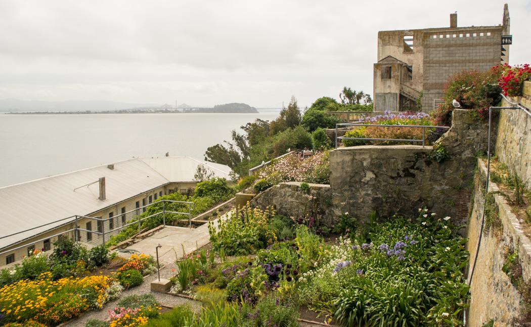 La prison d'Alcatraz - les jardins - San francisco