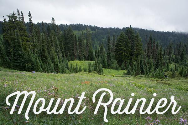 Mount Rainier, un volcan près de Seattle
