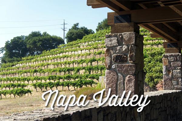 napa valley - la vin américain - californie