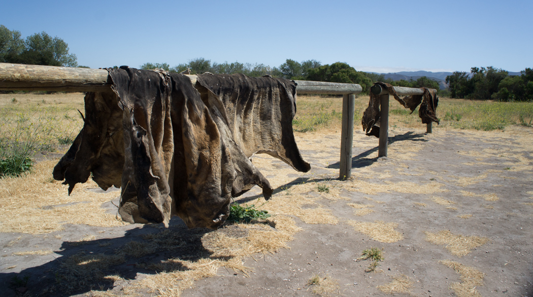 Peaux de bison - Purisima Mission Californie