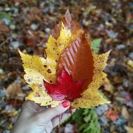 Instagram Mathilde Vermont des feuilles