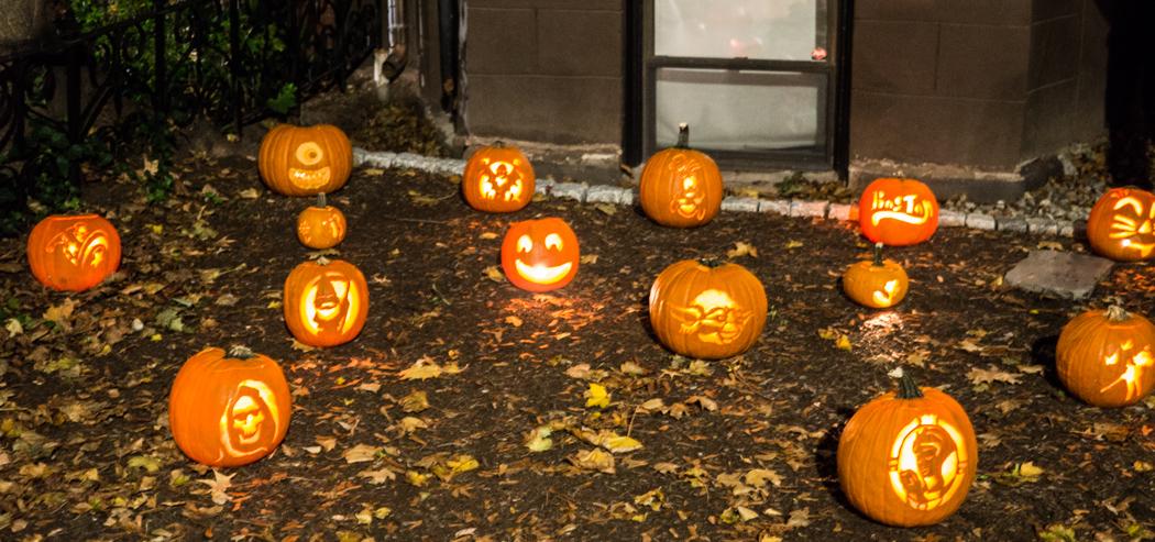 citrouilles jack o lantern Boston Back Bay
