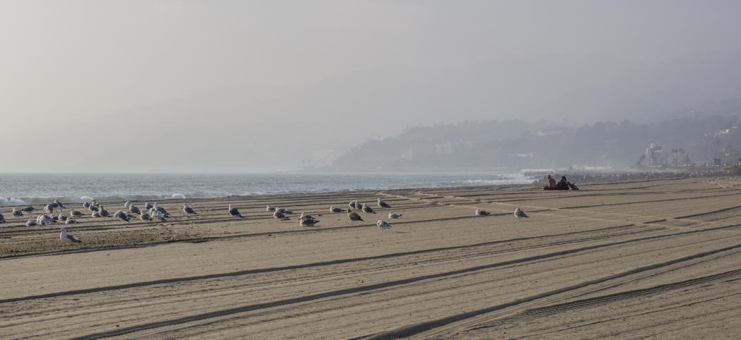 Los Angeles Californie - la plage - www.maathiildee.com