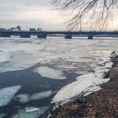 Charles River gelée // www.maathiildee.com