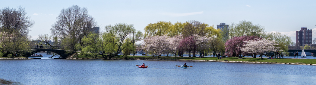 Printemps Boston - canoe