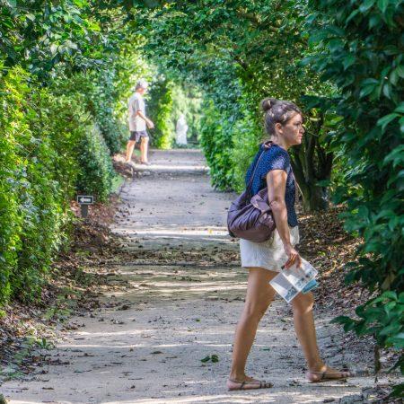 Middleton Place Charleston - dans les jardins à la française