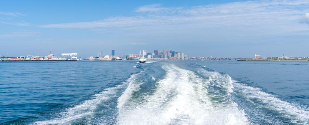 Voir les baleines a Boston-1