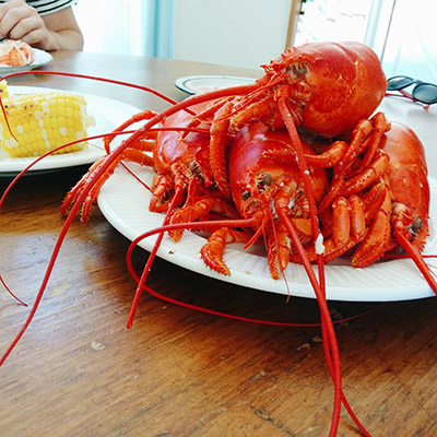 Assiette de homards