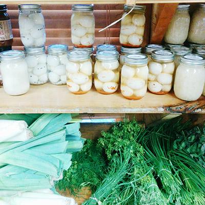 Des pots et conserves chez Tendercrop Farm