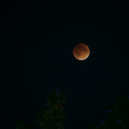 Blood moon-1