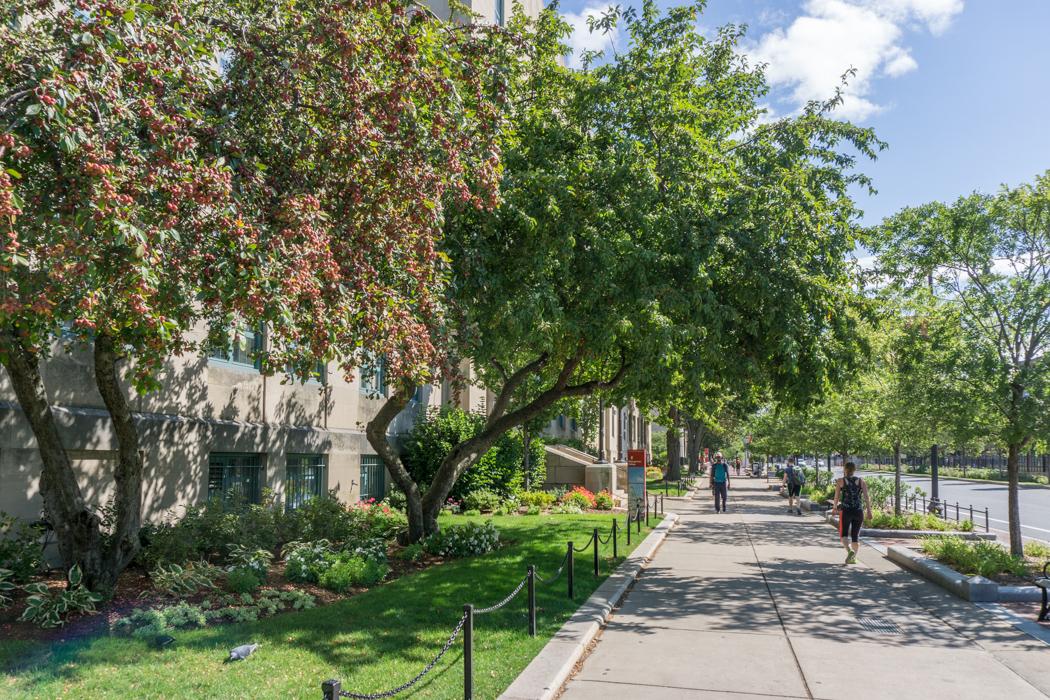 Boston university-3