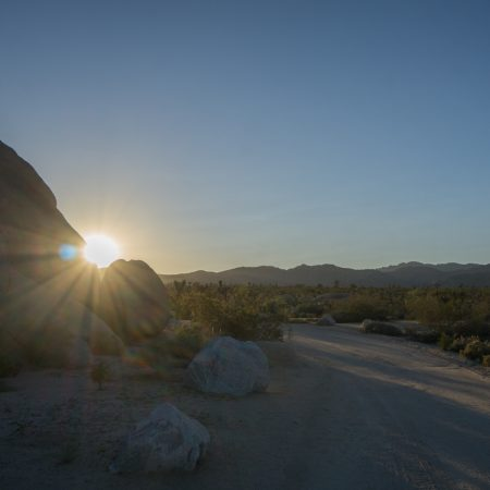 california - coucher de soleil joshua tree national park