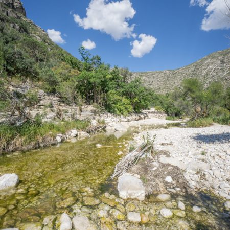 Guadalupe - Mc Kittrick Canyon