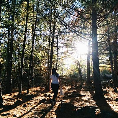 Fells automne Boston