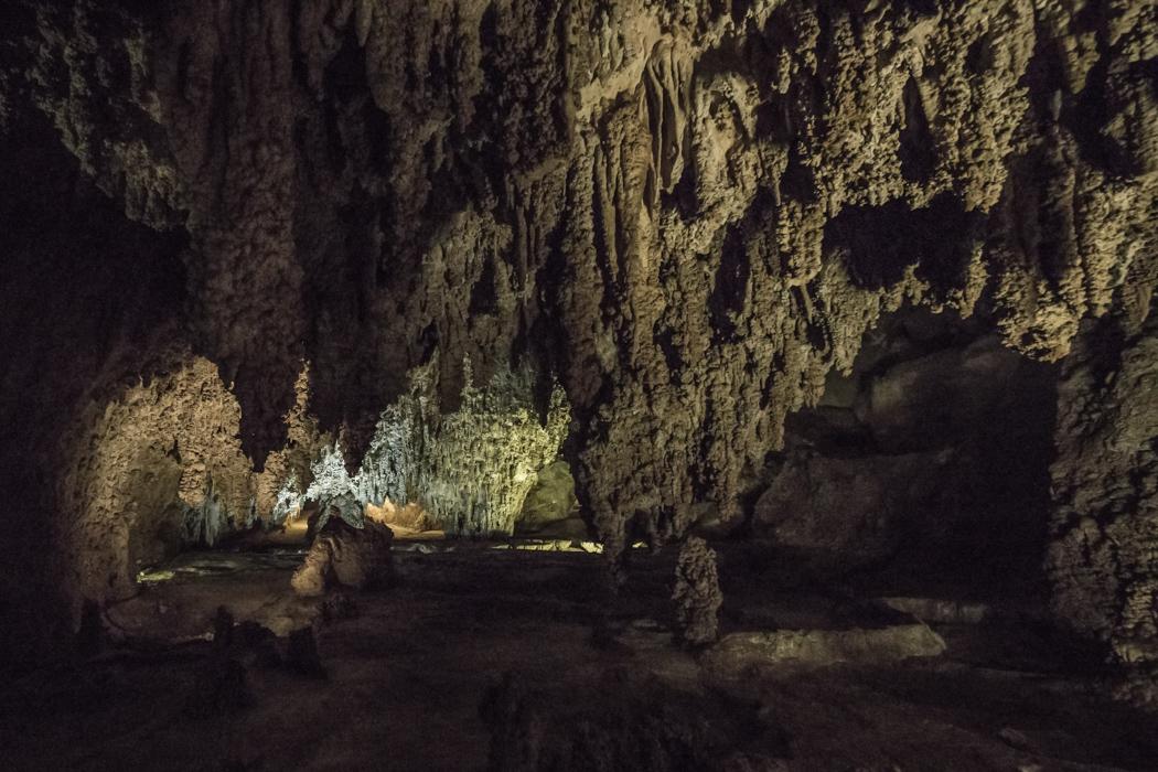 CARLSBAD caverns nouveau mexique-8