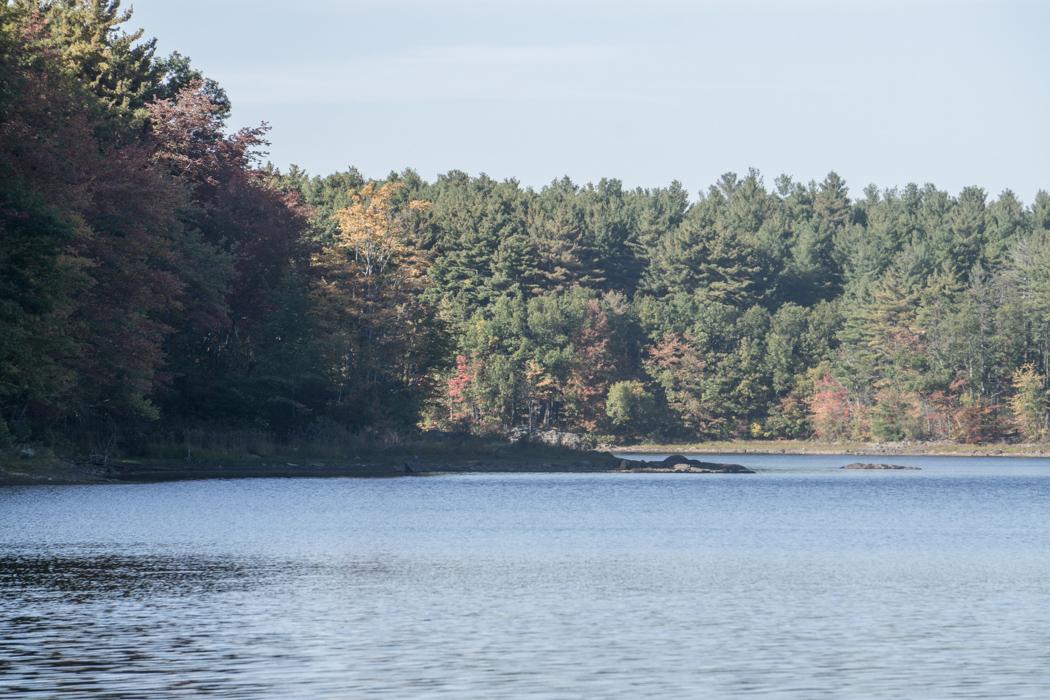 Middlesex Fells reservation boston-1
