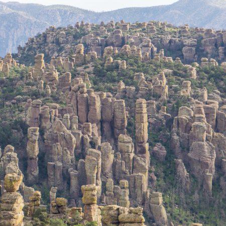 chiricahua arizona coeur de pierre