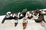 Visit Santa Cruz