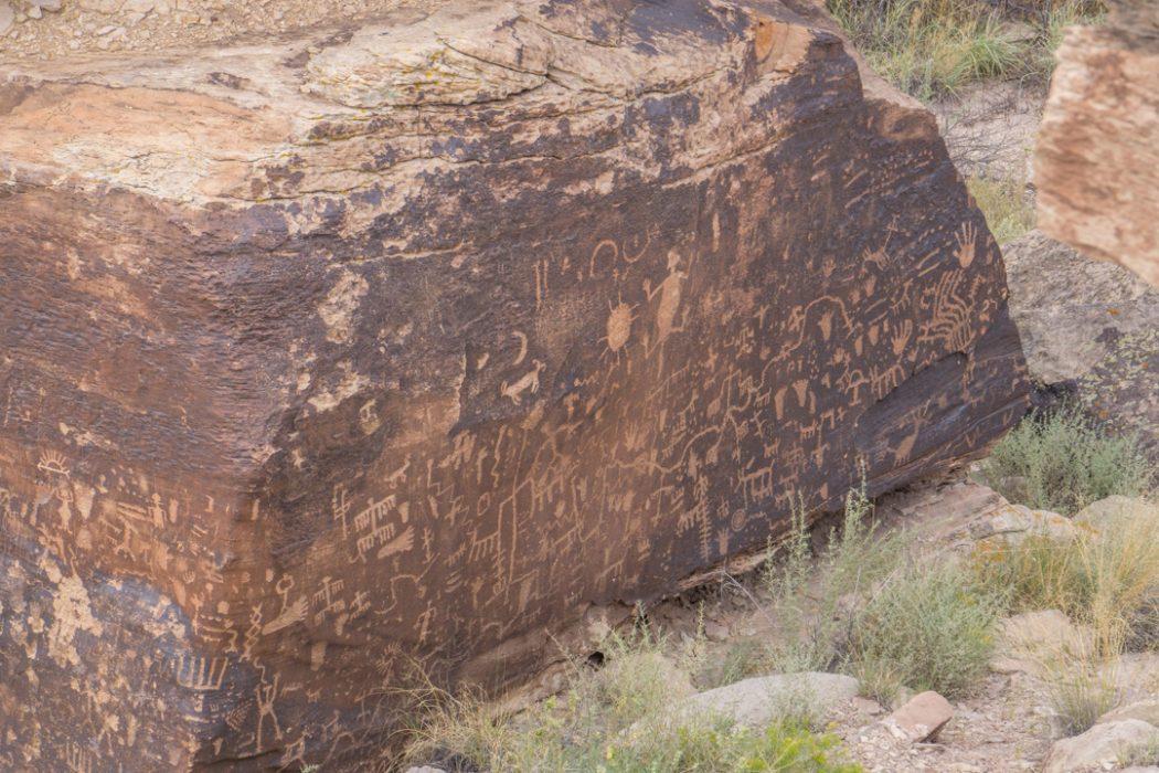 foret petrifiee arizona-28