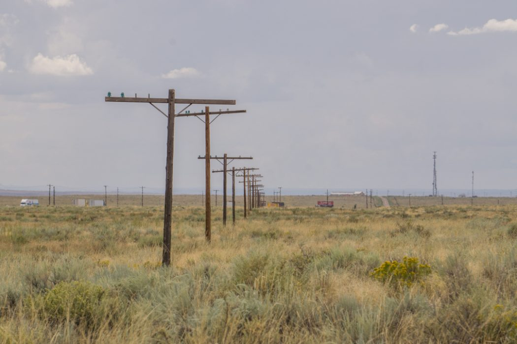 foret petrifiee arizona-31