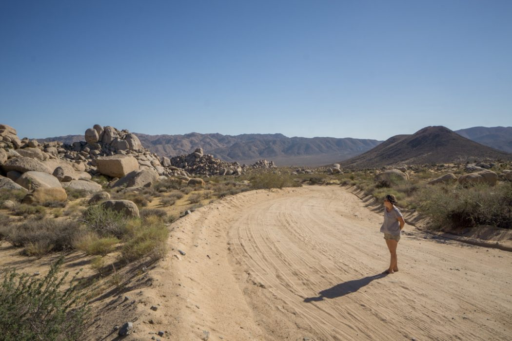 Joshua Tree Park California-10