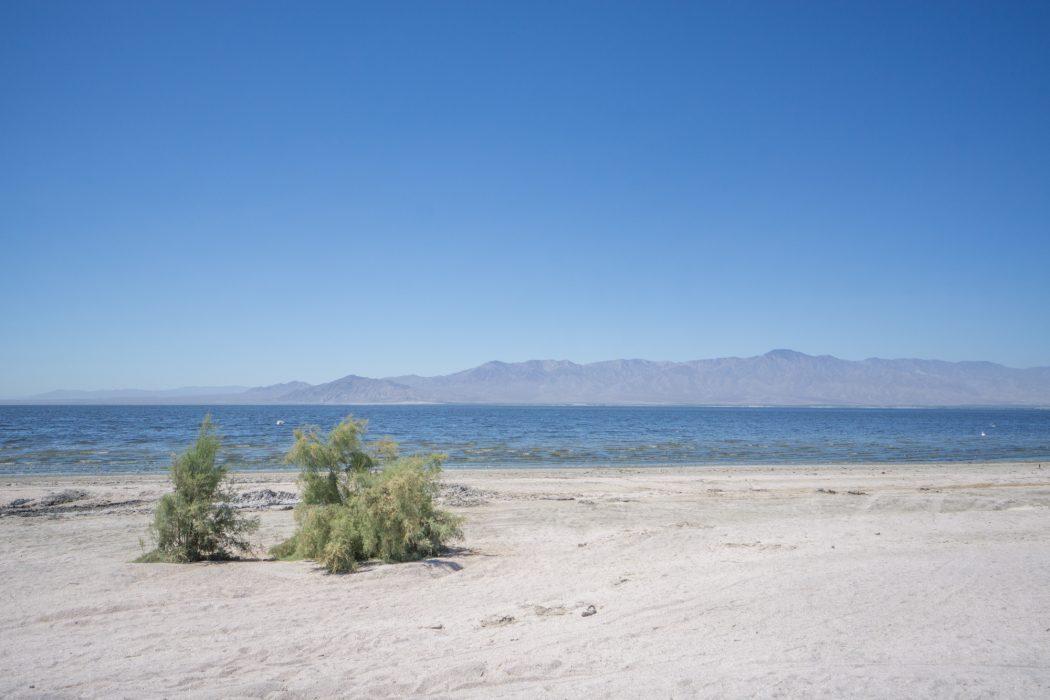 Route USA Californie Salted Sea-2