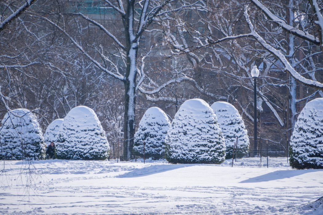 Boston hiver neige-17