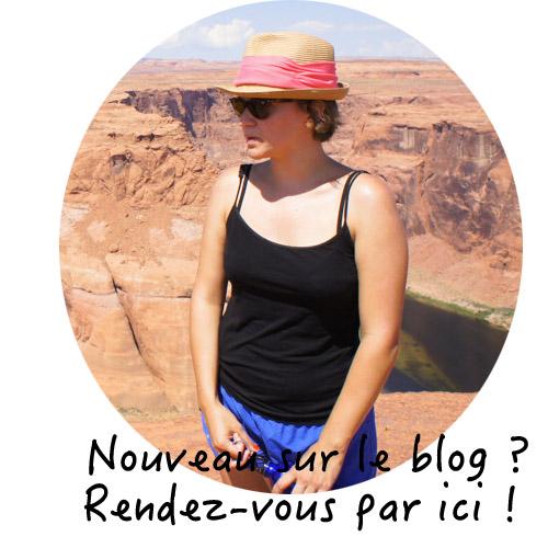 Le blog de Mathilde vivre a boston voyager aux etats unis