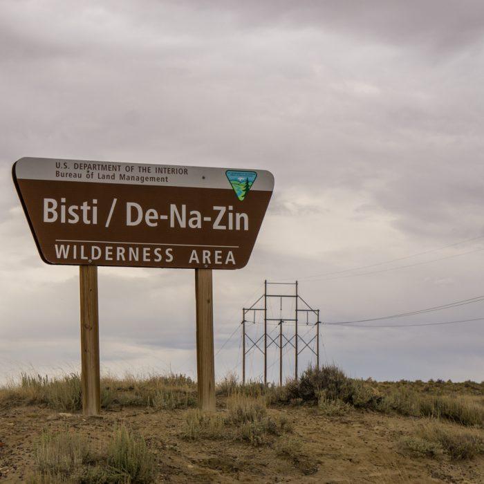 Bisti Badlands Nouveau Mexique-13