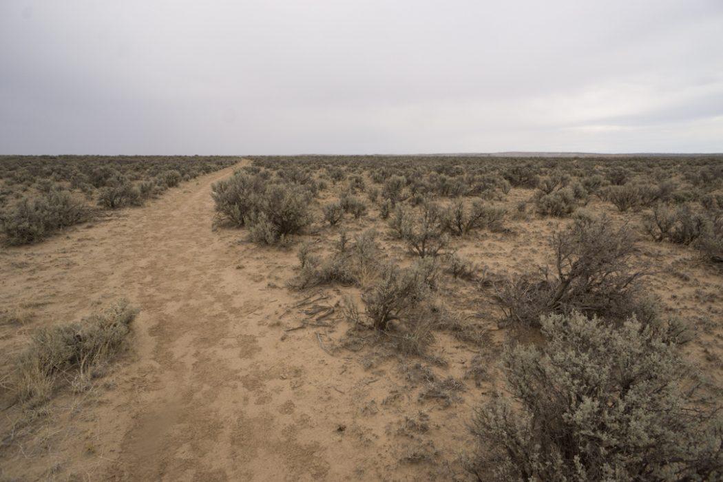 Bisti Badlands Nouveau Mexique-16