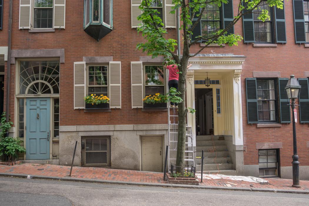 Visiter Beacon Hill - Boston-32