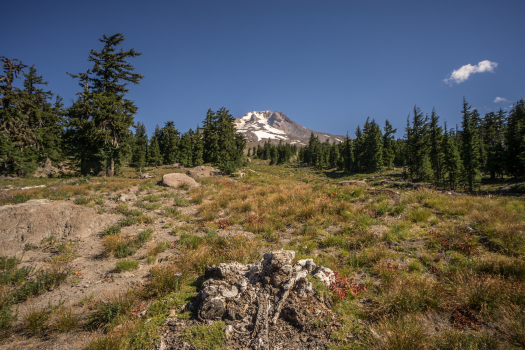mt-hood-oregon-5