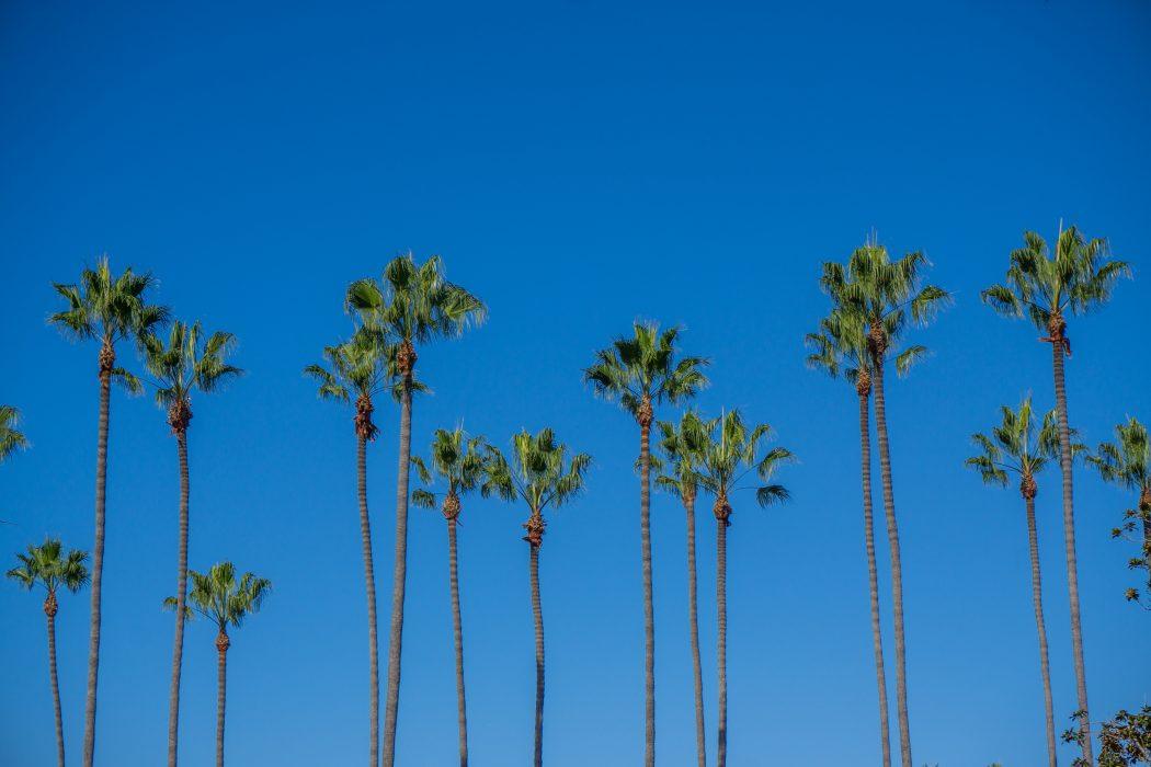 san-diego-californie-1