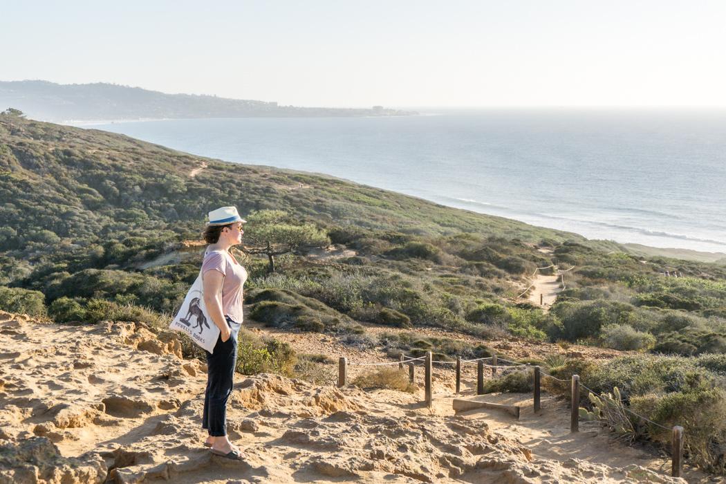 san-diego-californie-torrey-pines-plage-15