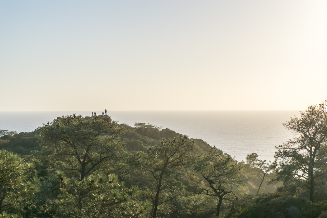 san-diego-californie-torrey-pines-plage-16