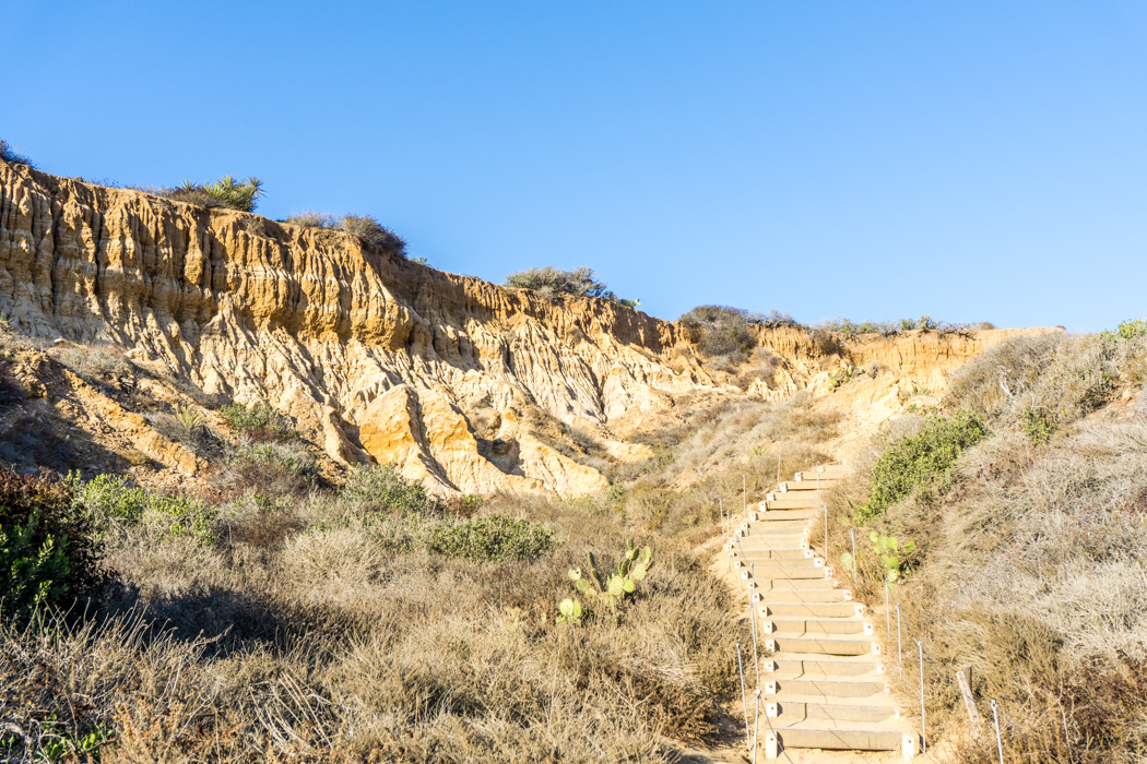 san-diego-californie-torrey-pines-plage-8