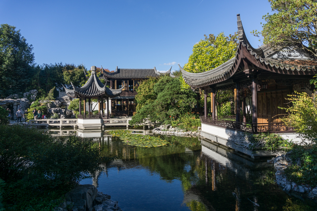 Le jardin chinois de portland oregon le blog usa de mathilde for Conception jardin chinois