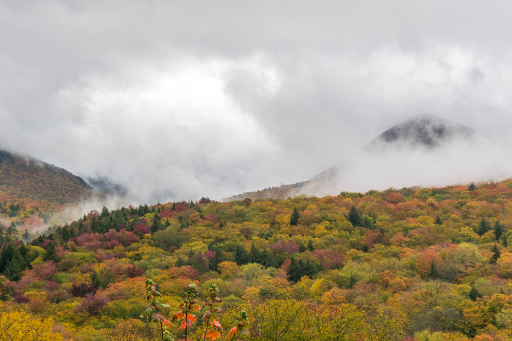 Fall Foliage Vermont (6 of 6)